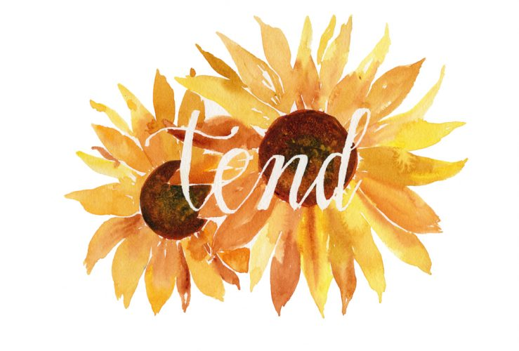 Tend Watercolor with Sunflowers